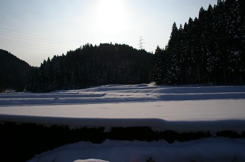 2006.12.31